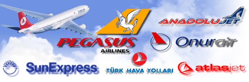 Diyarbakır Trabzon Uygun Uçak Biletleri Burada!