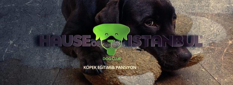 Köpek Pansiyonu Gaziosmanpaşa