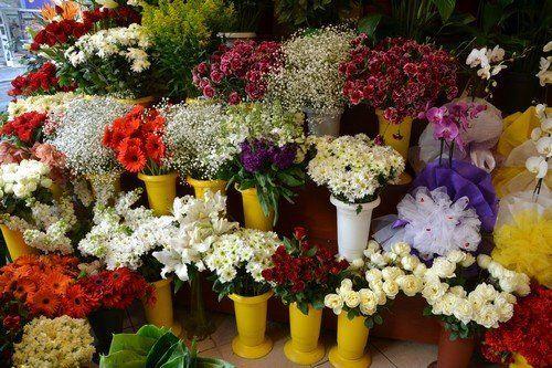 Özel Çiçek Siparişleri