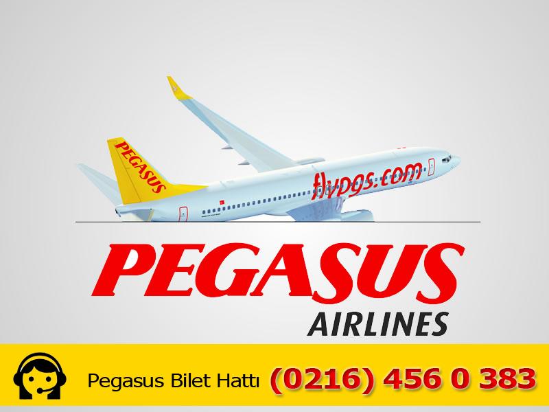 Pegasus Telefon Numarası : (0850) 840 48 31