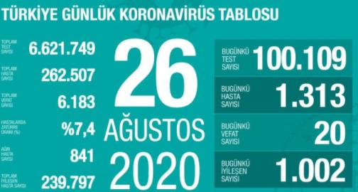 Türkiye'de koronavirüs durumu