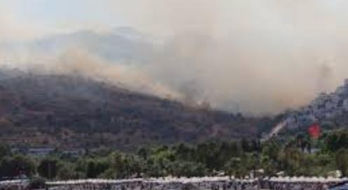 Bodrum'daki yangınındaki zahiyat