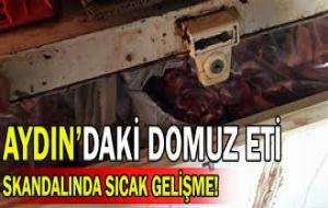 6 Ton Domuz Eti İle Yakalandı Serbest Kaldı