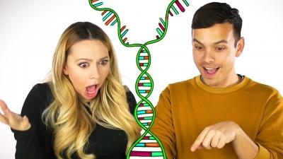 DNA Kardeş Testleri: Kardeş veya Kardeş İlişkilerinin Tespiti