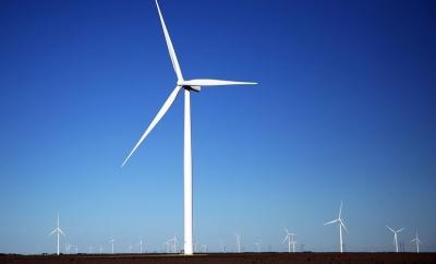 Rüzgar Gülü Fiyatları Hakkında