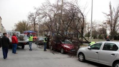 Şiddetli rüzgarlar büyük hasarlar verdi