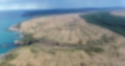 Sinop nükleer santralinden vazgeçiyor