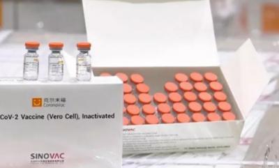 Türkiye'ye Sinovac aşısı ulaştı